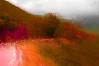 Transition numérique (François Tomasi) Tags: tableaunumérique art paint painting rouge red décembre colors color couleurs couleur lights light lumières lumière pointdevue pointofview pov yahoo google flickr france europe world tomasi françois françoistomasi campagne nature montagne photoshop photography nikon reflex tableau 2017 2016 ngc
