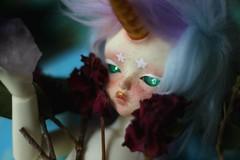 s h i n y (d a r l i n g☆) Tags: bjd abjd soom beyla crystals amethyst unicorn