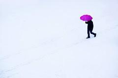 Man with a Pink Umbrella (jolanta mazur) Tags: winter snow man walking umbrella minimalism minimalistic negativespace simplicity