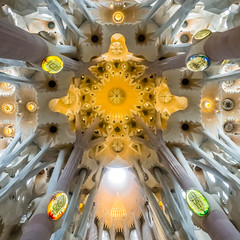 Sagrada Família Nave Ceiling (ctj71081) Tags: 100 antonigaudí barcelona church sagradafamília spain toprint