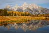 Fall Morning at Schwabachers Landing, Grand Teton National Park (Bryan Carnathan) Tags: schwabacherslanding grandtetonnationalpark gtnp grandteton wyoming mountain mountains mountainscape mountainpeak peak outdoor outdoorphotography nature naturephotography landscape landscapephotography reflection nationalpark travel beautifuldestinations beautifulplace morning fall fallfoliage bright colorful brilliant striking bryancarnathan canon canoneos5dsr