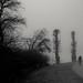 Biking in the Mist
