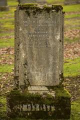 Mossy headstone (IanMackie) Tags: headstone gravemarker stone moss hawkheadcemetery paisley