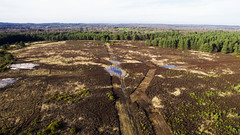 Elstead Common Aerial (Morgan Masters photography) Tags: drone dronephotography aerial phantom3 phantom dji elstead surrey surreyhills heath heathland heather forest woodland woods landscape landscapes path paths tree trees sky bright colors colour colorfull colourfull colur