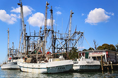 IMG_1870 (Blue Turtle Trawler) Tags: fortmyersbeach shrimpboats sh