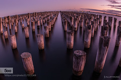 Princess Pier (muriloals) Tags: ocean travel pink blue trees sunset sea lake seascape beach nature water beautiful beauty clouds sunrise canon outdoors pier amazing long exposure princess mark australia melbourne symmetry fisheye ii 7d 500px 815mm ifttt