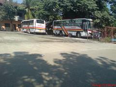 Mayamy Trans 0224-B & Magicline Express 0224-C (PBPA Hari ng Sablay ) Tags: bus pub philippines isuzu angat partex airconbus pbpa partexautobody cityoperation mayamytrans philippinebusphotographersassociation magiclineexpress