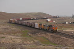 _MG_4066.jpg (Reed Skyllingstad) Tags: railroad train washington cloudy unitedstatesofamerica tracks rail railway bnsf 1103 manifest crex burlingtonnorthernsantafe 1414 9911 sd70mac c449w es44ac citirail