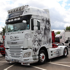 DAF XF David G.Davies & Sons Ltd 9DGD The Call of The Wild (NTG's pictures) Tags: show charity wild david truck hospital manchester for call northwest stadium sunday great royal childrens fundraising ltd sons daf the xf etihad gdavies 9dgd 19july2015