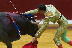 DSC_9363.jpg (josi unanue) Tags: animal blood spain bull arena bullfighter sansebastian esp toro traje asta sangre espada bullring unanue guipuzcoa matador torero tauromaquia sufrimiento cuerno urea banderilla banderilero