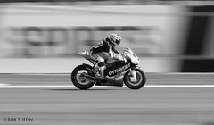 S Cortese Dynavolt Intact GP Silverstone British Grand Prix 2015 Moto2 GP (REWT Photography) Tags: blur speed canon fast bikes grand racing prix silverstone 7d motorcycle british motor motogp panning motorsport intact 2015 100400 cortese moto2 dynavolt