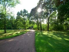 Дорожка в парке // A path in park (alexyv) Tags: park shadow sun tree grass path солнце дерево тень парк трава дорожка oranienbaum ораниенбаум