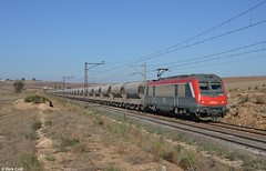 ONCF 36003, near Tamdrost, 30-10-2015 9:22 (Derquinho) Tags: train morocco maroc fret marruecos marokko sncf astride phosphate zem oncf oued 36000 36003 akiem khouribga fosfat tamdrost fosfaat fosfaattrein