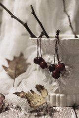Foraged 1 (Caz Ann) Tags: stilllife leaves berries twigs