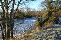 River Ayr frozen in December 2010 (isdc1316) Tags: winter ice scotland frozen december ayr 2010 ayrshire riverayr ayronautica