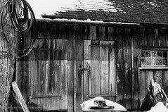 Vermont Sugar Shack  179/215 (uselessbay) Tags: travel blackandwhite film canon buildings 1982 vermont f1 sugarshack uselessbay canonf1 kodakektachrome100 epsonperfectionv600 uselessbayphotography williamtalley