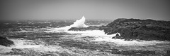 Urd (toroddottestad) Tags: nikond750 sigma 200mm nalen urd storm extreme weather norway christmas wind waves wet winter westnorway sotra vestlandet