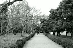 A path (しまみゅーら) Tags: pentax mz3 smc fa 43mm f19 limited fuji neopan acros 100 kyoto nijojo 二条城