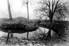 First snow in Belgium in 2017 (massonth) Tags: eos 50d canon belgium river tree winter snow frost fog mist cold reflection nb bw black nd white
