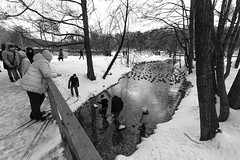 DSCF0999 (Vladimir Glebov) Tags: moscow park winter fujixpro2 xf1024