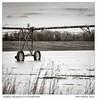 K1IM1679-Edit (Schleiermacher) Tags: arkansas delta k1 mattmathews pentax blackwhite farms monochrome rural m2004