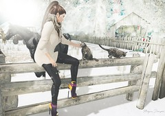 hi, Rufus (Morgana Direwytch for GLAM!) Tags: scandalize chapter four bens boutique phedora mill cats cat winter snow out
