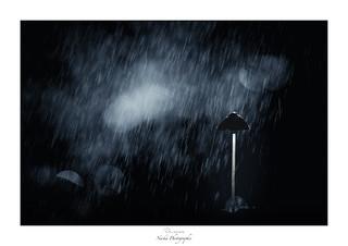 Pluie de météores