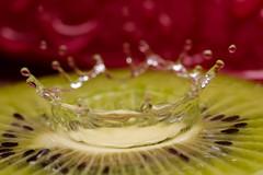 Kiwi_splash (Elisabeth Lys) Tags: kiwi fruits gouttes nikon d7200 105mm sigma highspeedphotography green red water macro amazing splash liquid