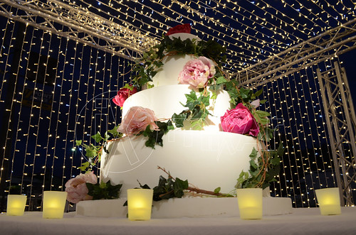 "Cutting Cake Lights • <a style=""font-size:0.8em;"" href=""http://www.flickr.com/photos/98039861@N02/33037182351/"" target=""_blank"">View on Flickr</a>"
