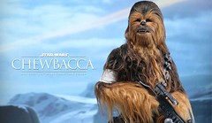 Hot Toys Star Wars VII - Movie Masterpiece 1/6 #Chewbacca Action Figure (epicheroes) Tags: actionfigure chewbacca hottoys masterpiece starwars