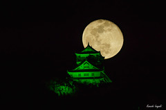 Green Gifu Castle (稲垣一志) Tags: gifu gifucastle gifucity gifupref japan mtkinkazan worldglaucomaweek castle fullmoon green illumination moon ライトアップ 世界緑内障週間 城 岐阜 岐阜城 岐阜市 岐阜県 日本 月 満月 緑 金華山