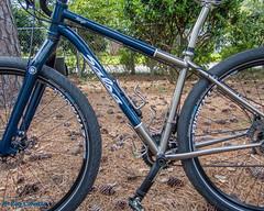 Fargo with Big Apple Tires (Roy Cohutta) Tags: schwalbe bigapple hs430 salsa fargo ti ballonbike ballontire tire ballon wirebead 29er bigapple29 commute bikecommute performanceline raceguard blackreflex 60622 28x235 29x235 bike bicycle cycle mountainbike tires tyres tyre tireclearance