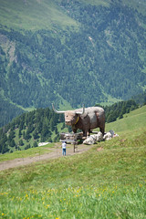Bull vs. Man (Guy Oved) Tags: italy it campitellodifassa trentinoaltoadige