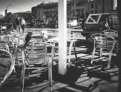 Pjaro en terraza de bar. (josmuoz88) Tags: bar terraza pjaro empuriabrava