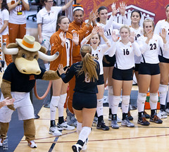 UT Volleyball (Honey Badger 007) Tags: college sports austin ut texas womens volleyball