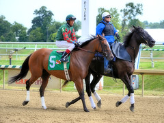 "2015-08-23 (54) r2 Victor Carrasco on #5 Purple Friday (JLeeFleenor) Tags: photos photography md marylandhorseracing laurelpark jockey جُوكِي ""赛马骑师"" jinete ""競馬騎手"" dżokej jocheu คนขี่ม้าแข่ง jóquei žokej kilparatsastaja rennreiter fantino ""경마 기수"" жокей jokey người horses thoroughbreds equine equestrian cheval cavalo cavallo cavall caballo pferd paard perd hevonen hest hestur cal kon konj beygir capall ceffyl cuddy yarraman faras alogo soos kuda uma pfeerd koin حصان кон 马 häst άλογο סוס घोड़ा 馬 koń лошадь outside maryland"
