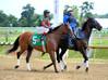 "2015-08-23 (54) r2 Victor Carrasco on #5 Purple Friday (JLeeFleenor) Tags: photos photography md marylandhorseracing laurelpark jockey جُوكِي ""赛马骑师"" jinete ""競馬騎手"" dżokej jocheu คนขี่ม้าแข่ง jóquei žokej kilparatsastaja rennreiter fantino ""경마 기수"" жокей jokey người horses thoroughbreds equine equestrian cheval cavalo cavallo cavall caballo pferd paard perd hevonen hest hestur cal kon konj beygir capall ceffyl cuddy yarraman faras alogo soos kuda uma pfeerd koin حصان кон 马 häst άλογο סוס घोड़ा 馬 koń лошадь outside maryland"