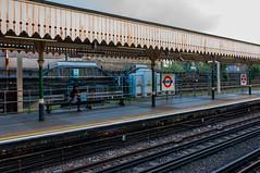 _DSC2624.jpg (matipl) Tags: uk england woman london unitedkingdom tracks trainstation gb eastham undergroundstation
