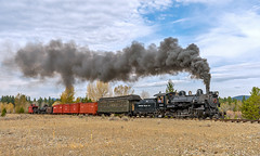 Eastbound mixed (kdmadore) Tags: railroad oregon train steam sumpter steamlocomotive mcewen sumptervalleyrailway svrr svry sumptervalleyrailroad