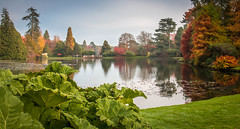 Sheffield Park and Gardens (PeterRobertsonPhotos) Tags: park trees england lake sussex colours sheffield foliage national trust canoneos70d