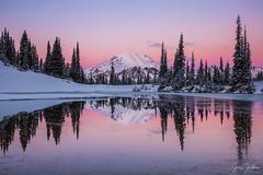 Rainier Winter Reflections (jeremyjonkman) Tags: