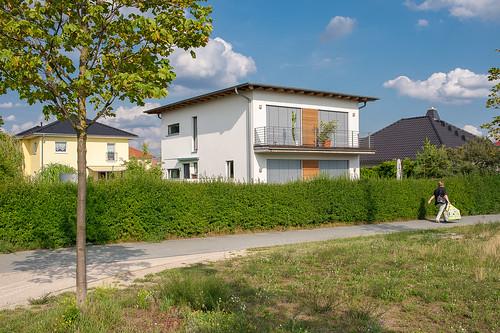 Schmetterlingswiesen Einfamilienhäuser Foto: Ole Bader