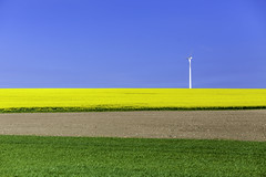 Coexist (Mabry Campbell (2nd Account)) Tags: field landscape photography 50mm photo skne spring colorful europe photographer power image sweden farm horizon may bluesky minimal photograph 100 sverige 40mm scandinavia hillcountry simple malm raps turbine malmo windturbine springtime 2012 fineartphotography f40 rapeseed architecturalphotography skane commercialphotography southernsweden ef1740mmf4lusm editorialphotography southsweden architecturephotography rapseed fineartphotographer houstonphotographer sec rapsseed mabrycampbell may172012 mrtensfladlinero tipofsweden 201205179654