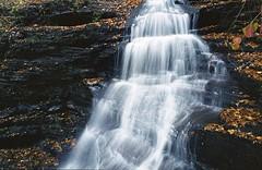 (Matt Allouf) Tags: park color fall 120 film waterfall 645 state kodak glen bronica 400 medium format expired portra vc pennsylvannia ricketts etrsi epsonv500