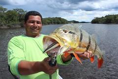Amazonia 2012 (70)