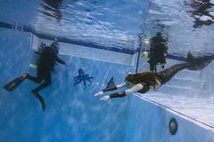 Creative Age Underwater Pumpkin Carving / Scuba Party (thediveshopmemphis) Tags: underwater unitedstates tn memphis scuba mermaid diveshop vsco fomoloop