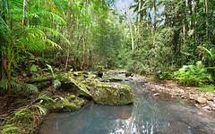 565 Commissioners Creek road, Commissioners Creek NSW