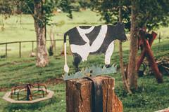 #60 of 365 days - cow (Ruadh Sionnach) Tags: ranch camera naturaleza tree verde green folhas nature grass leaves playground canon photography cow leaf plantas natural natureza folha parquinho fazenda childrenplayground t5i canont5i