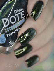 Pashmina - Dote (Walquiria R.P.) Tags: nails pashmina dote esmaltenacional