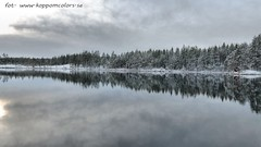 20151121087291 (koppomcolors) Tags: sweden sverige scandinavia värmland varmland koppomcolors håltebyn
